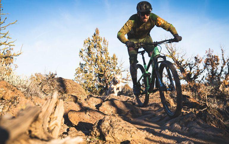 Best Beginner Mountain Bikes
